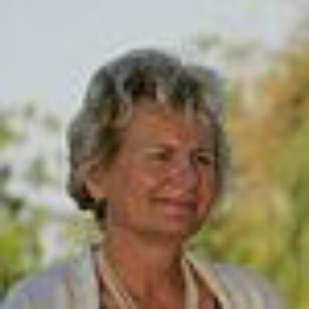Linda Sirois